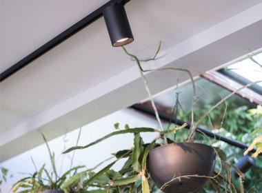 Inside Bar Botanik showing Mondoluce supplied lighting